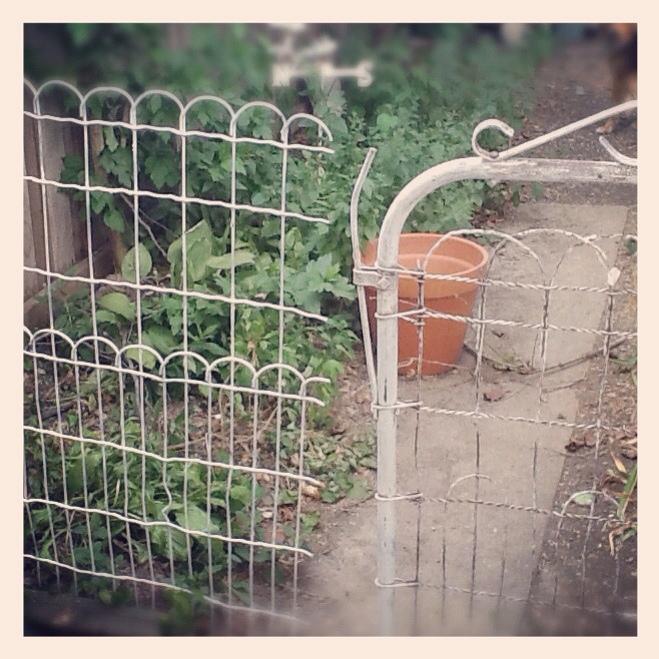 Garden Gate P B